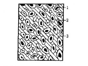 印刷油墨的结构